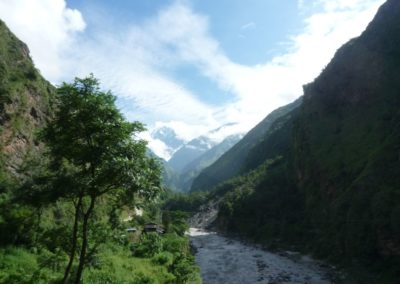 Reißende Flüsse in wilder Landschaft